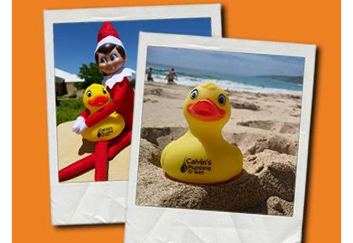 ducky_contest